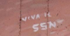 7-Viva-il-SSN